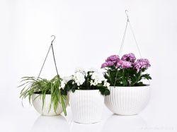 DEDRA Závěsný květináč s kovovým řetízkem, smetanový