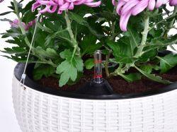 DEDRA Závěsný květináč s ocelovým lankem, samozavlažovací, XL