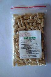 Hlíva ustřičná kapsle 100 ks - Pouze čistý prášek ze sušené hlívy ústřičné přímo od pěstitele